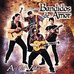 Bandidos de Amor Asi La Vida