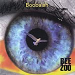 The Bee Zoo Boobalah