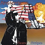 Amsterdamn Scars & Stripes