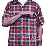 Dan Haas 11 Songs