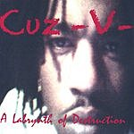 Cuz -V- A Labrynth Of Destruction