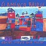 Daniel Maya Flamenco Bridge