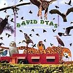David Dyas Really Super Good