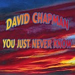 David Chapman You Just Never Know