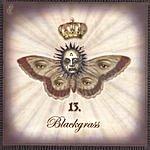 Blackgrass 13