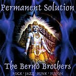 The Bernd Brothers Permanent Solution