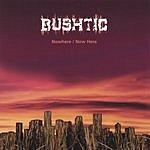 Bushtic Nowhere/Now Here