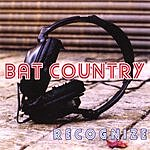 Bat Country Recognize