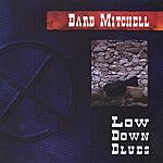 Barb Mitchell Low Down Blues