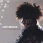 Janet Bressler Evening Shades Prevail