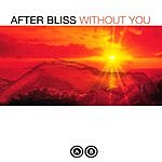 After Bliss Without You