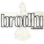 Brodhi The Dovecote