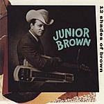 Junior Brown 12 Shades Of Brown