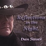 Dan Sauer Reflections In The Night
