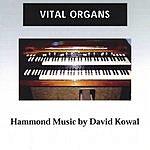 David Kowal Vital Organs