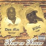 Don Mac Now Or Never