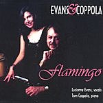 Evans & Coppola Flamingo