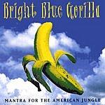 Bright Blue Gorilla Mantra For The American Jungle