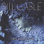 Bill Gable This Perfect Day