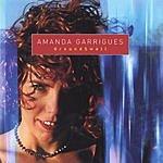 Amanda Garrigues Groundswell