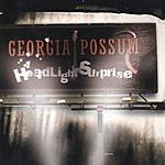 Georgia Possum Headlight Suprise