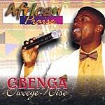Gbenga Owoeye-wise African Praise, Vol.1