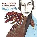 Joe Irizarry Wings To Fly