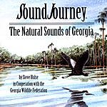 Steve Hulse Sound Journey: The Natural Sounds Of Georgia