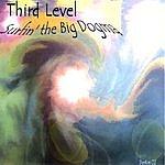 Third Level Surfin' the Big Dogma