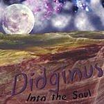 Didginus Into The Soul