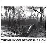 Jeff Bell The Many Colors Of The Lion
