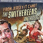 The Smithereens From Jersey It Came!: The Smithereens Anthology