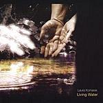 Laura Komarek Living Water