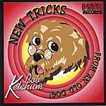 Bob Ketchum New Tricks From An Old Dog