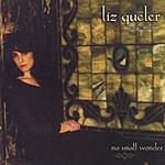 Liz Queler No Small Wonder