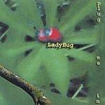 LadyBug Plug Me In