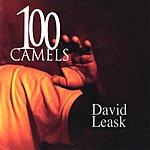 David Leask 100 Camels
