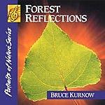 Bruce Kurnow Forest Reflections