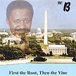 Mr. B. First The Root, Then The Vine