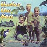 Media Line Road Under The Sea- William Edward Pierce IV