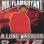 Mr. Flamboyant A Lone Warrior