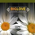 Richard Madigan Big Love