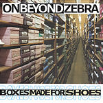On Beyond Zebra Boxes Made For Shoes