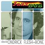 David Ondrick Flesh & Bone
