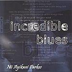 Nii Ayikwei Parkes Incredible Blues
