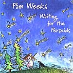 Pam Weeks Waiting For The Perseids