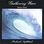 Frederick Nighthawk Gathering Wave