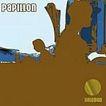 Papillon Soledad