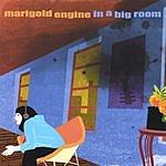 Marigold Engine In A Big Room