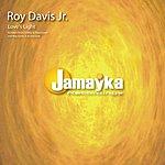Roy Davis Jr. Love's Light
